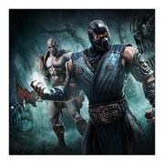 Mortal Kombat. Размер: 60 х 60 см